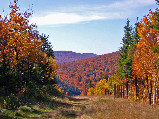 Hunter_Mountain_Foliage
